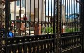 Кованые ворота с золотым патинированием