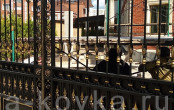 Ворота кованые для загородного дома